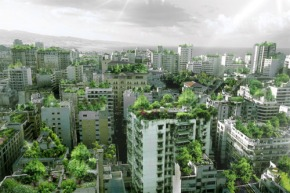 Thriving Plants, Thriving Communities: How Green Space Affects Crime in Urban Environments